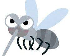 蚊の対策として蚊がいなくなるスプレーの効果が抜群だった